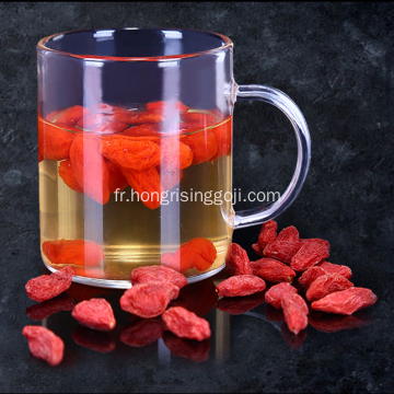 Goji Berry Nouvelle culture 2018